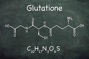 Rappresentazione molecolare del glutatione