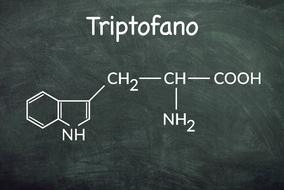 Formula chimica del triptofano