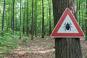 Ein Warnschild für Zecken hängt an einem Baum