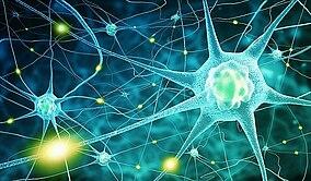 Immagine di neuroni