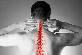 Illustration der Halswirbelsäule