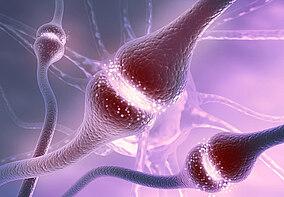 Illustrative Darstellung von Nervenzellen