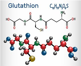 Molekulare Darstellung Glutathion