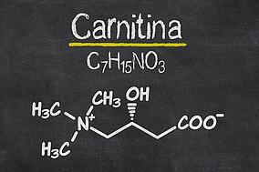 Formula chimica della carnitina