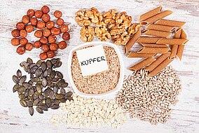 Lebensmittel, die Reichhaltig an Kupfer sind