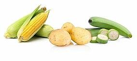 Maiskolben, Kartoffeln und grüne Bananen auf weißem Hintergrund