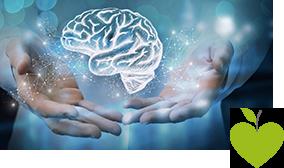Illustration eines Gehirns schwebt über Händen